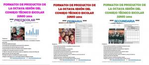 FormatosOctavaCTE