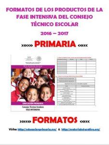 FormatosProductosFICTEPrimaria