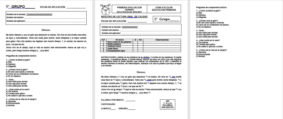 Formato de registro y lecturas para medir la velocidad y comprensión ...