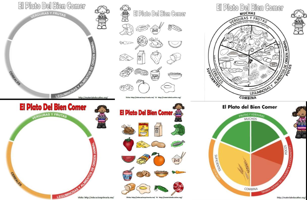 Plato Del Bien Comer | Material Educativo