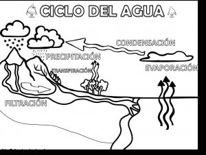 cicloagua