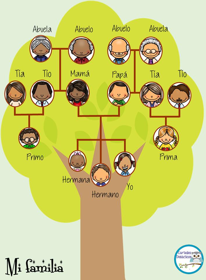 Estupendos dise os para ense ar y aprender sobre el rbol - Diseno arbol genealogico ...