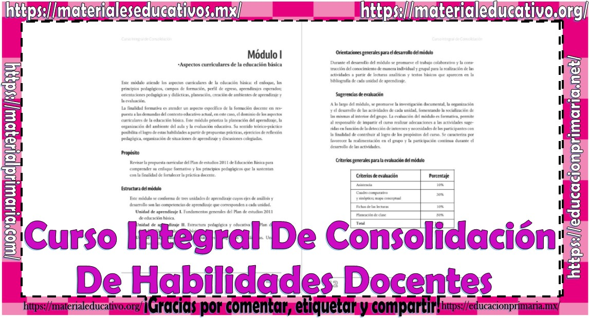 Curso Integral De Consolidación De Habilidades Docentes